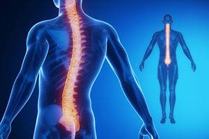 Методики рентгенографии позвоночника и суставов