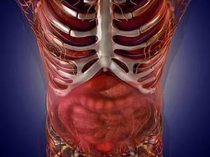 Ультразвуковая диагностика  острой тонкокишечной непроходимости