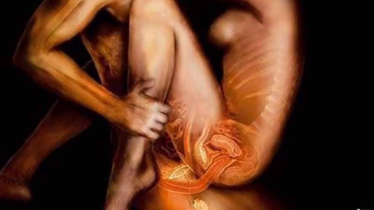 рентген снимки секс и половые органы